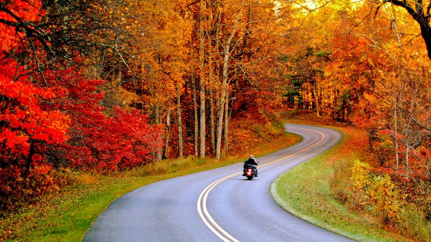 A motorcycle drives down the Blue Ridge Parkway in a blaze of autumn color