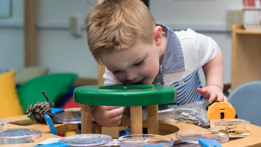 A small child looks through a magnifying table at specimens in clear dishes