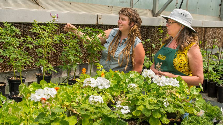 A students and instructor in a greenhouse examining a plant